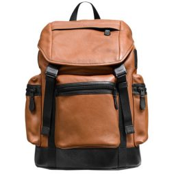 Coach Brown Leather Bagpacks F71976-SDBK