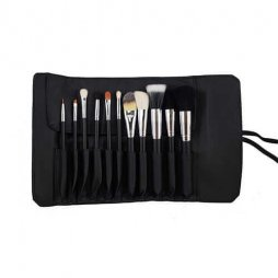 SET 682-11 PICE PRO SABLE SET